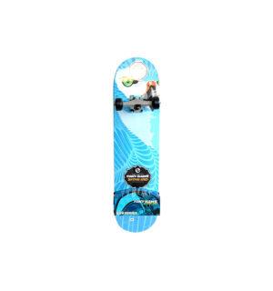 skate-big-hawk