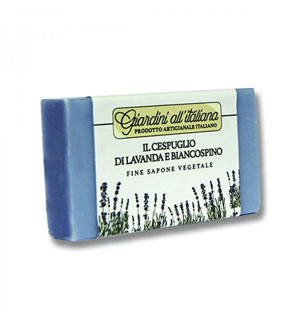 il-cespuglio-di-lavanda-e-biancospino-giardini-all-italiana